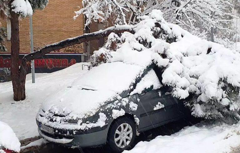 Evo kako nadoknaditi štetu ako Vam drvo ili ledenica oštete vozilo