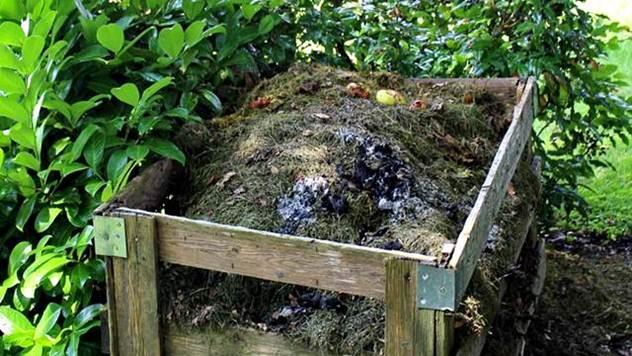 Za zdraviju planetu – kompostiranje. Šta je kompostiranje i kako ono funkcioniše