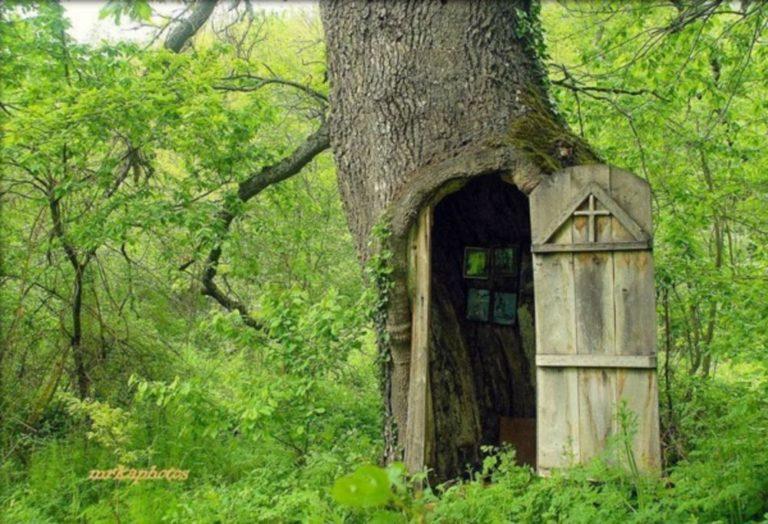 Crkva u stablu hrasta kao nestvarna kućica iz epske fantastike, Sveti Pantelejmon u selu Jovac